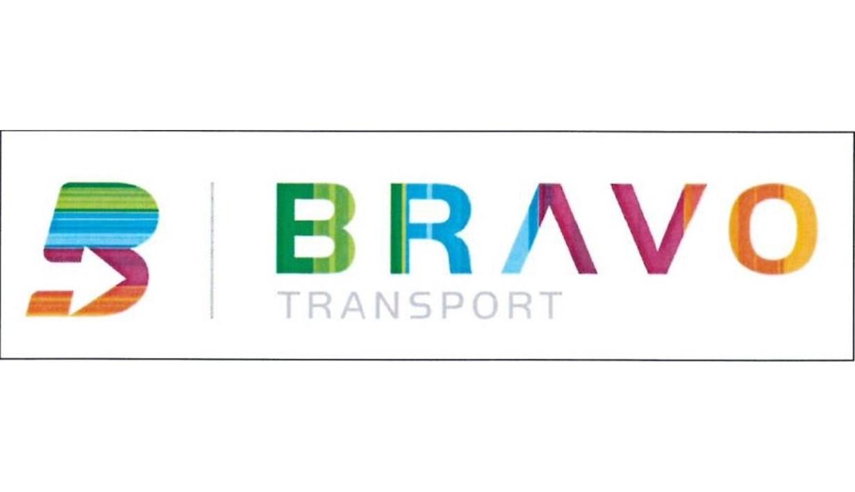 BRAVO Logo.JPG (52 KB)